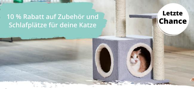 Katzennonfood-Artikel im Angebot