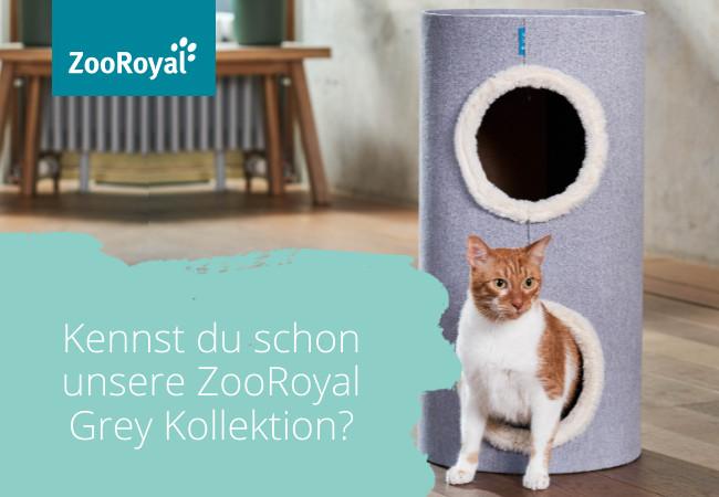 Die GREY Kollektion für Katzen - exklusiv bei ZooRoyal